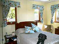 Patterned curtains with tie backs and matching gathered valance.